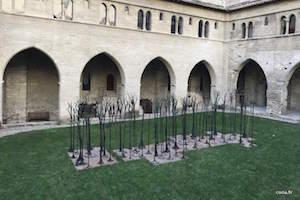 Incentive Avignon Événementiel - Visiter L'intérieur Du Palais Des Papes