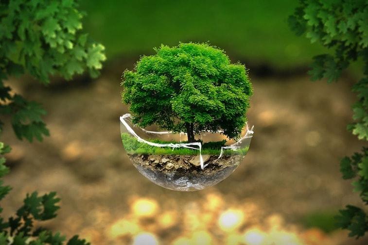 Et Si Vous Rendiez Votre événement D'entreprise Plus éco-responsable ?