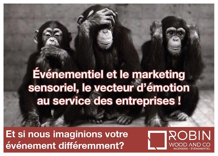 Événementiel et le marketing sensoriel, le vecteur d'émotion au service des entreprises